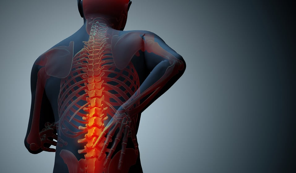 injured spine